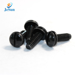 High quality Customized Precision Nylon black screw