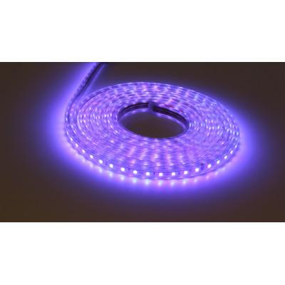 Good Choice for  Household Decoration SMD5050 RGB 60leds/m 220V Led Strip Lights