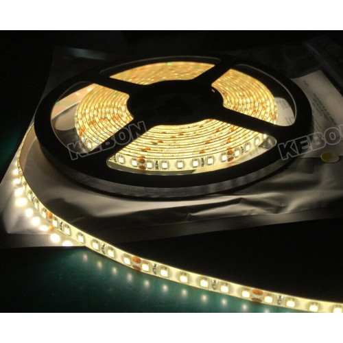 Wholesale SMD2835 60LEDs DC12V/24V Waterproof LED Flexible Strip Light