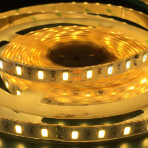 SMD2835 240 LED two lines two rows 15mm width DC 12V/24V LED Flexible Strip Light
