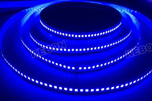 DC12V 24V high density SMD2835 192 LEDs waterproof Flexible Strip Light