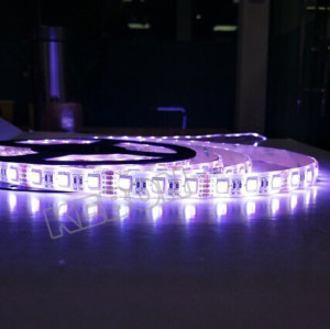 Dimmable 4 in 1 LED DC12V 24V RGBW/WW SMD5050 changing color LED Flexible Strip Light