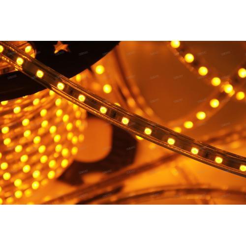 Economy  SMD5050  8mm Single Color 60leds/m 220V Led Strip Lights