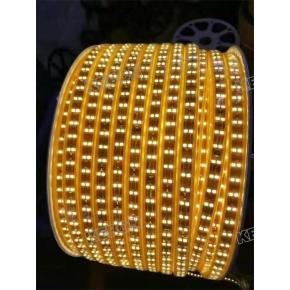 Super Bright Outdoor  SMD2835  180leds/m Double Row220V Led Flexible Strip Lights