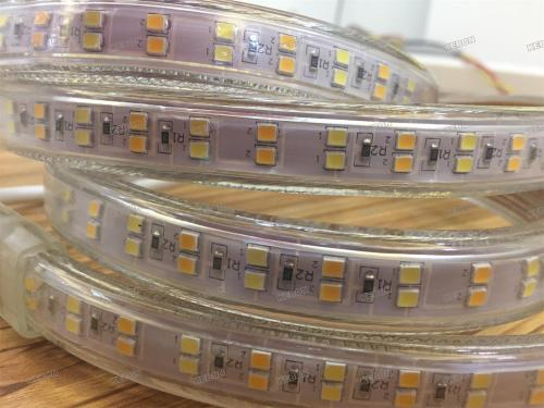 New Product Subsection Control  SMD2835  160leds/m Two Colors 220V Led Flexible Strip Lights with Light Efficiency