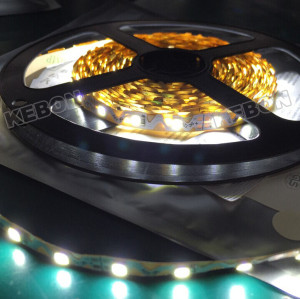 Home and Commercial Decoration DC12V 24V SMD2835 168LEDs 120 degree Beam Angle LED Flexible Strip Light