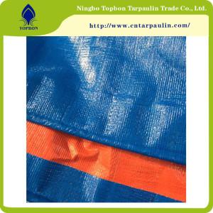 Good Price PE Waterproof Tarpaulin with Tents TPT009
