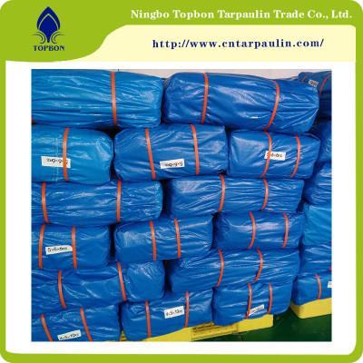 PE Tarpaulin with Double waterproof surfaces TBN13