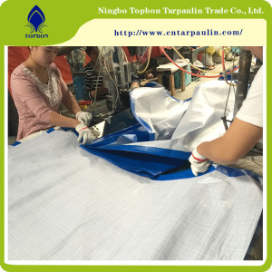 Blue PE Tarpaulin for Construction Cover TPT021