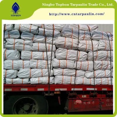 China Hot sale PE Tarpaulin for rain cover washable TBN14
