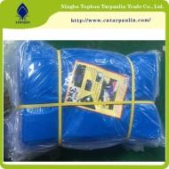 Covering Plastic Canvas Pe Tarpaulin