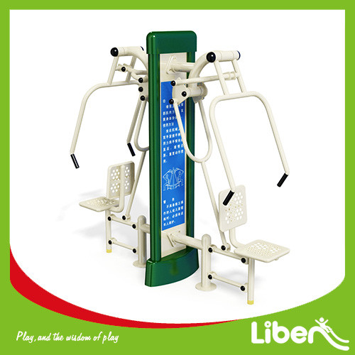 Double Push Chair Outdoor Fitness Equipment