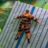 Liben jungle theme trampoline park in Isreal