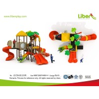 Physical Climbing Combined Slide in Children Playground