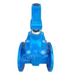 Gate valve with key
