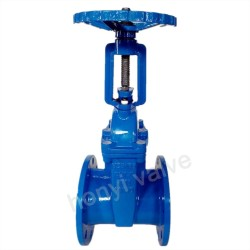 BS 5163 Rising stem gate valve