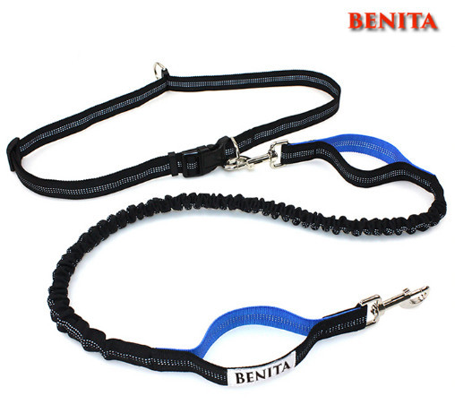 reflective hands free dog leash