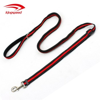Reflective Training Bungee Adjustable Nylon Pet Leash