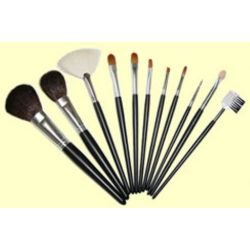 private label 10 pieces makeup brushes
