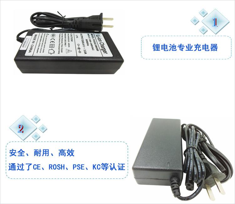 POEAE锂电池充电器