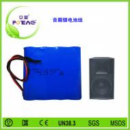 音箱锂电池组