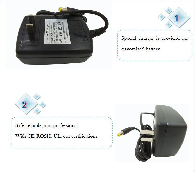 16.8v battery charger