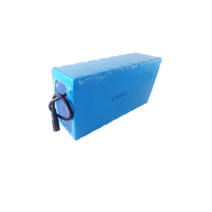 High performance 36 volt lifepo4 lithium ion batterypack for hillbilly golf trolley in Italy