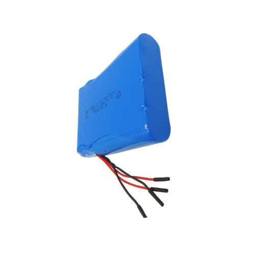 High performance rechargeable 12v li-ion battery pack for GPS tracker infusion pump made in Dongguan