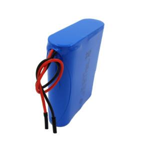 3S1P 2200mah 12v li-ion rechargeable battery for loudspeaker box emergency lamp France