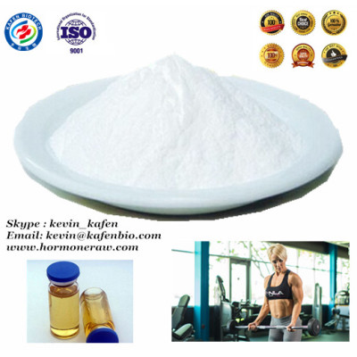 High Quality Bodybuilding Steroid Powder Testosterone Propionate