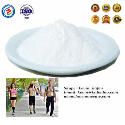 Pure Raw Powder Testosterone Phenylpropionate Pharma Grade 99% Min.