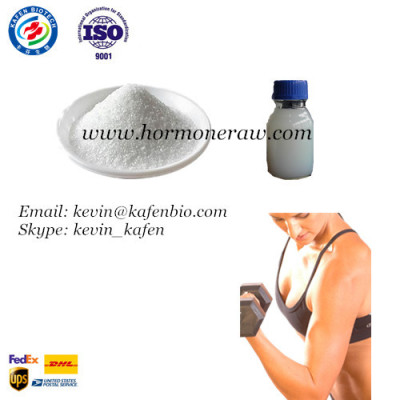 Superb Steroid Hormone Powder Clostebol Acetate (Turinabol) CAS: 855-19-6