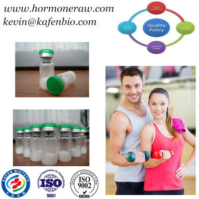 Muscle Building Human Growth Peptides Lyophilized Powder Peg Mgf