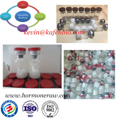 Polypeptide Ghrp-2 Acetate CAS No 158861-67-7 for Pharmaceutical Supplment