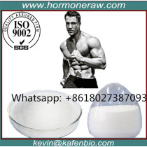 Stanolone Androgenic Steroid Androlone Powder Myotolon for Male Enhancement