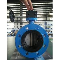 Double Flange Concentric Butterfly Valve