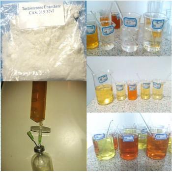 Testosterone Enanthate / Primoteston Depot