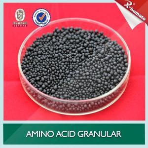 Amino Acid pearl