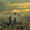 3 Best Things To Do in Shenzhen