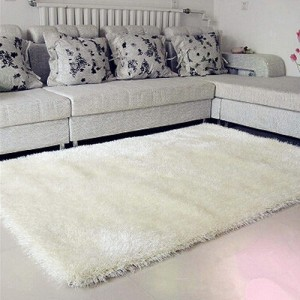 Fashion Design  Handhufted Carpet