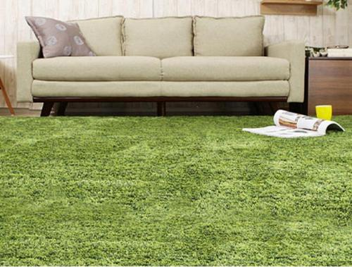 Thickened hand tufted polyester shaggy carpets and rugs