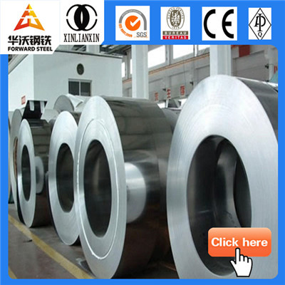 hot rolled galvanized steel plate/coil (PPGI)