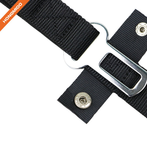 Multiple Function 2 in 1 Dog Leash