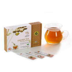 Hot Sale Instant Ginger Green Tea Extract