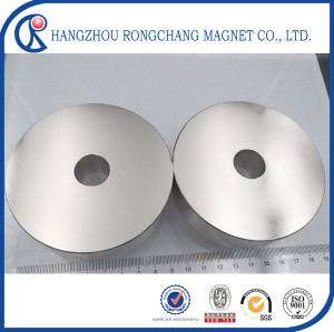 High Quality Rare Earth Neodymium Magnets