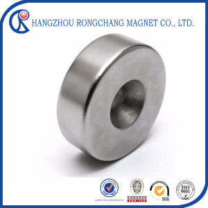 High Quality Permanent Ring Sintered NdFeB Speaker Magnet