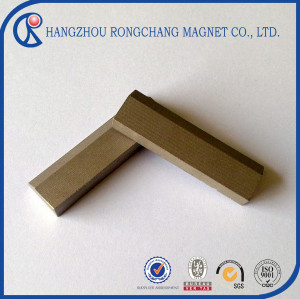 SmCo Magnet in irregular shape