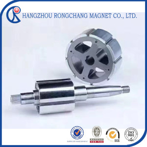 Arc NdFeB Magnet for Motor Rotor