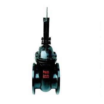 KZ44T-10 Quick open rising stem ductile iron gate valve