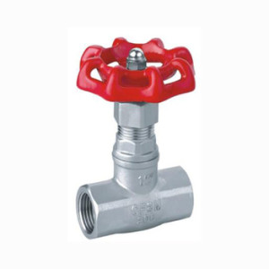 Stainless Steel Full Bore NPT Female Thread Globe Valve